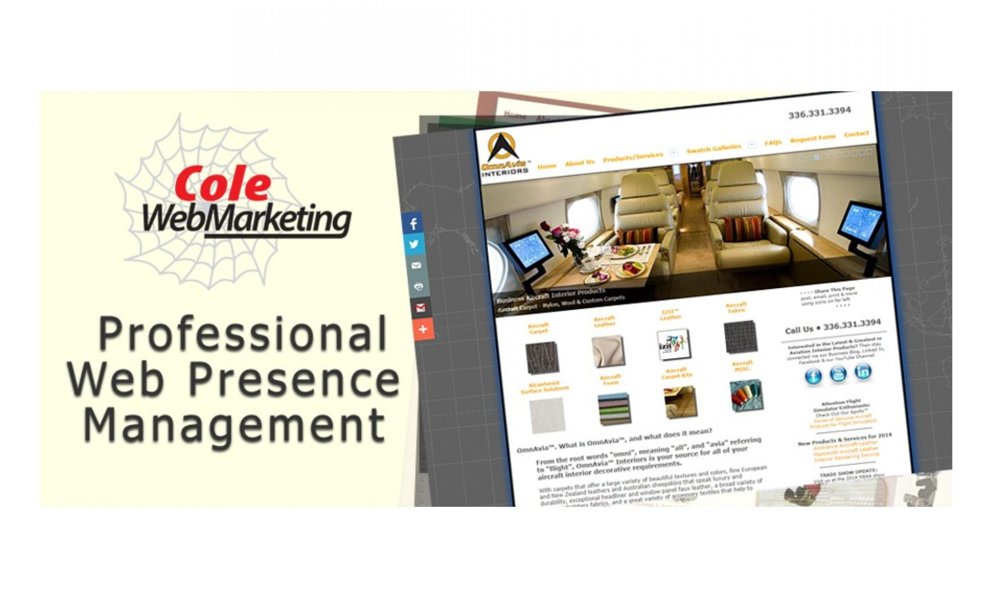 Comprehensive Web Presence Management